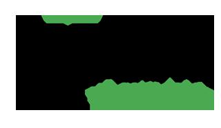Ally-logo-trans